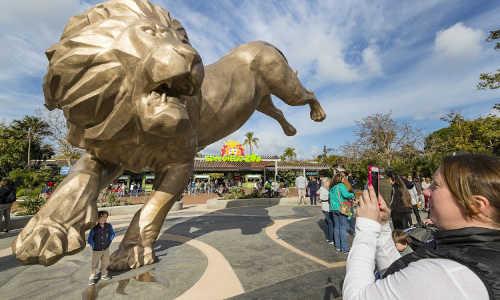 san diego zoo tour
